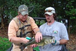 Fisheries 2